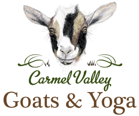 Carmel Valley Goats & Yoga
